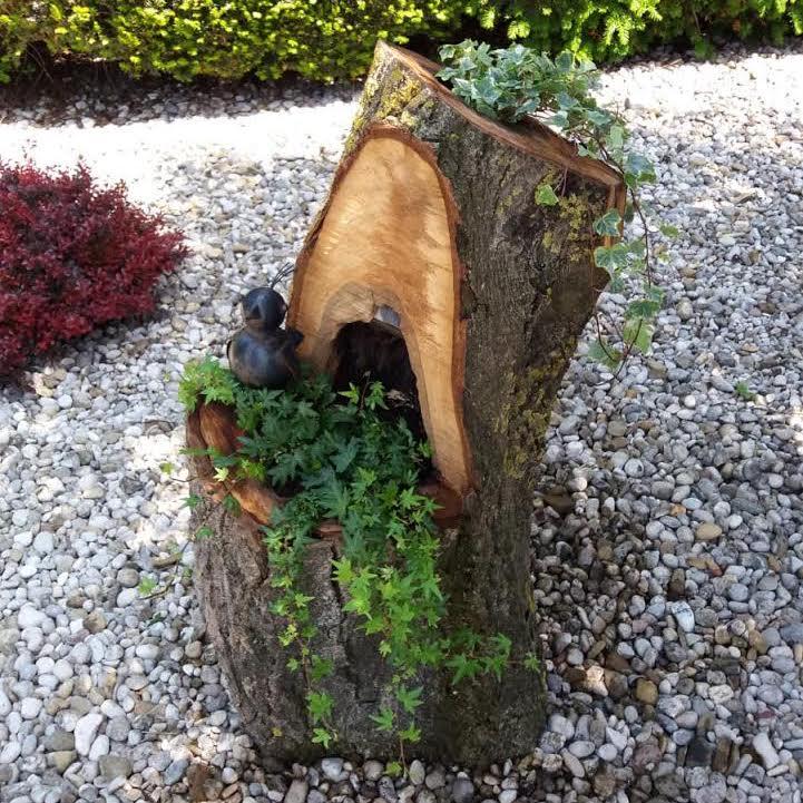 Baumstamm bepflanzt
