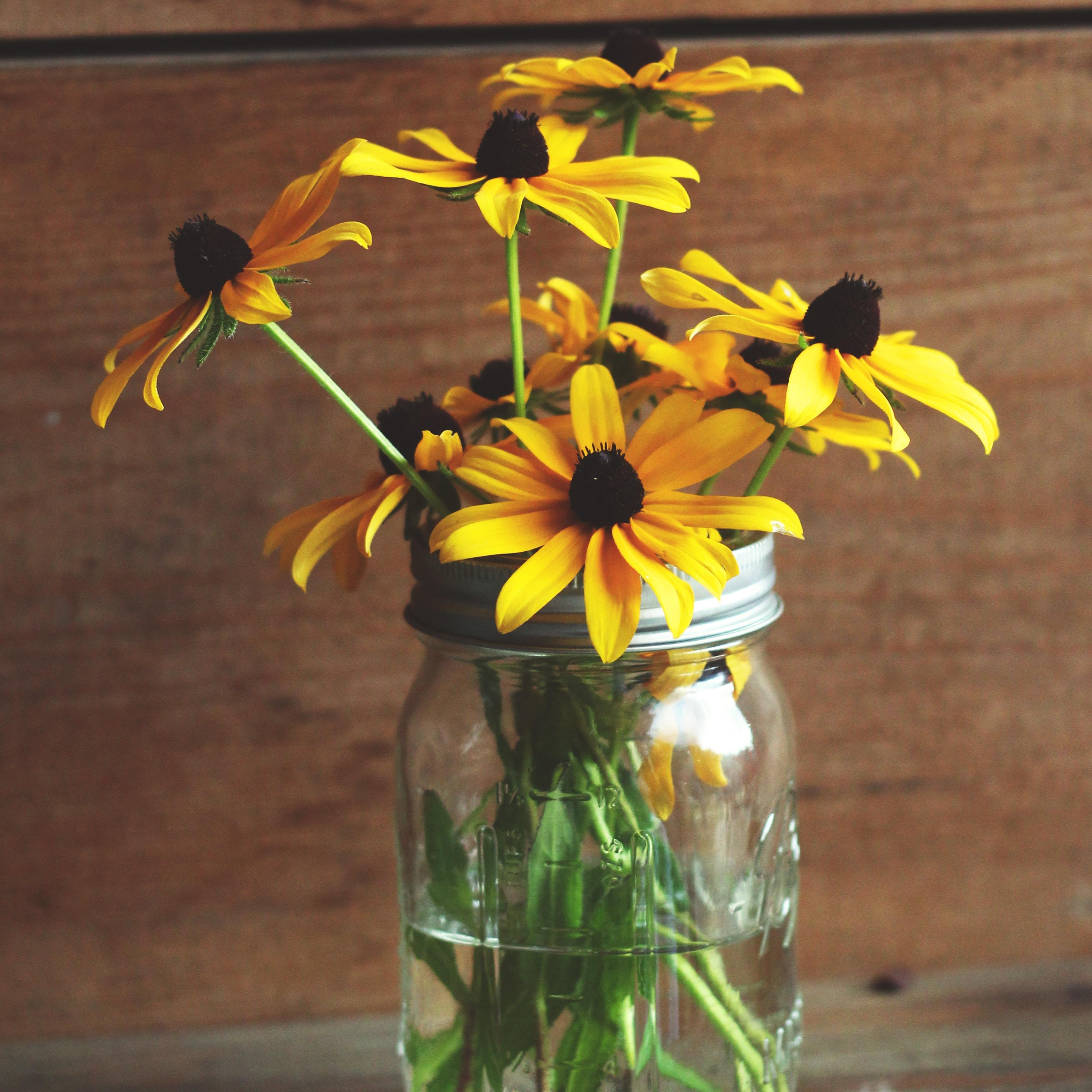 Schraubglas als Vase