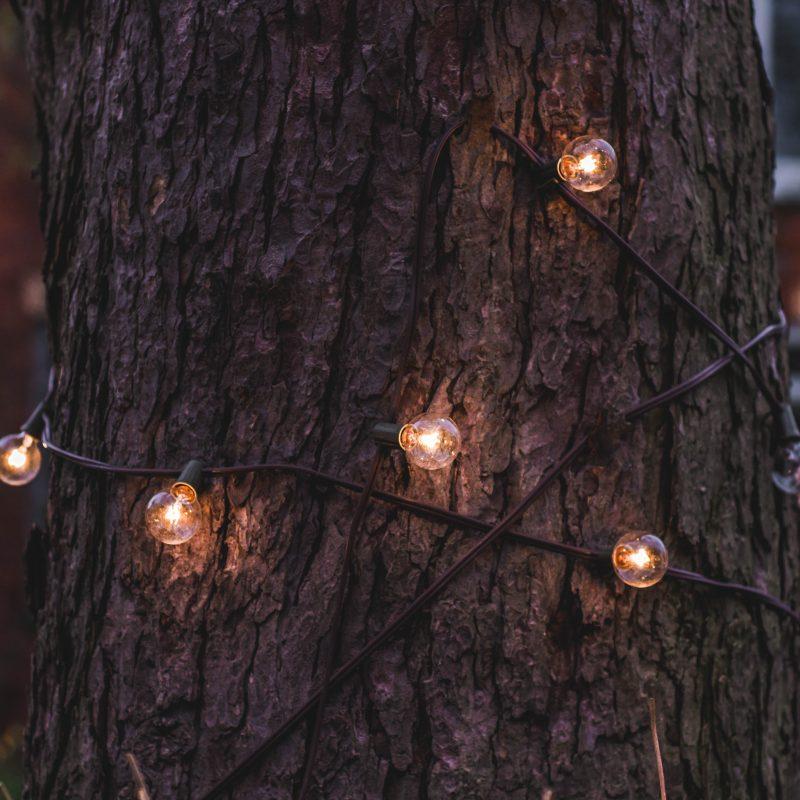 Lichterkette um Baum