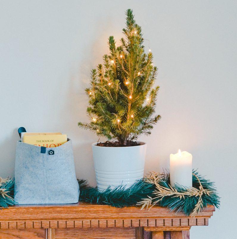 Weihnachtsbaum mit Lichterkette